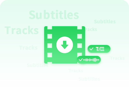 keep subtitles and audio tracks